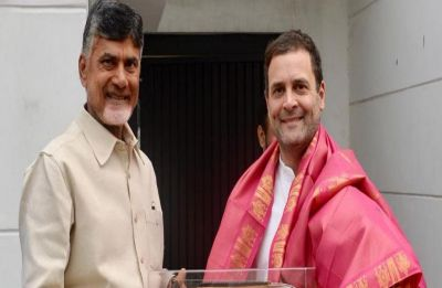 Chandrababu Naidu meets Rahul Gandhi on firming up anti-BJP front after poll results on May 23
