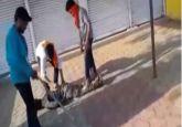 Forced to chant 'Jai Shri Ram', 3 Muslims including woman thrashed by alleged cow vigilantes