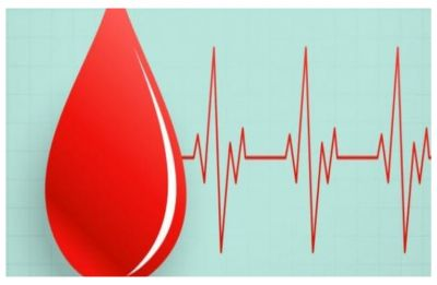 World Blood Donor day 2019: How to quickly regain the blood lost after donating