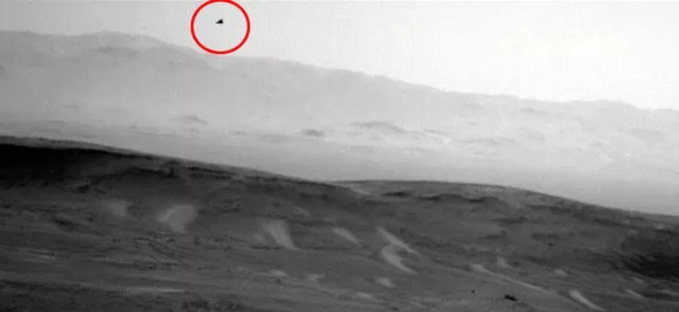 Did NASA photograph a flying bird on Mars? Details inside - News Nation  English