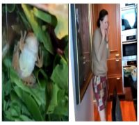 Extra organic! Woman finds 'live' frog in carton of green salads, WATCH