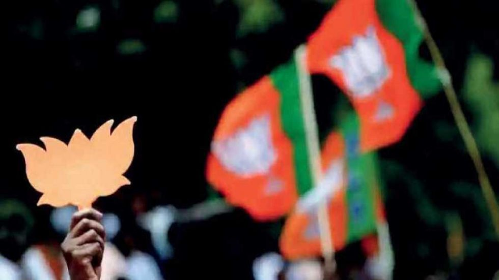 BJP flags (File Photo)