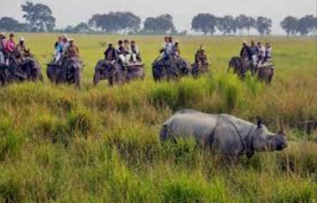 Places to visit in Assam