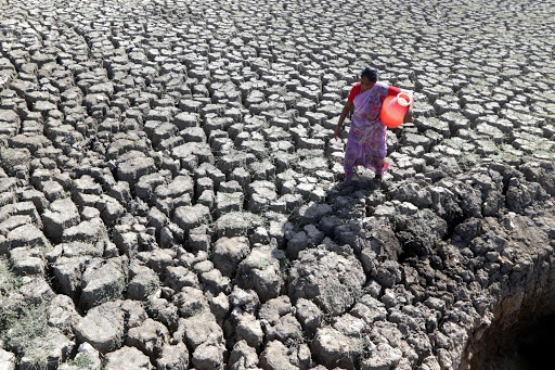 Chennai crippled by acute water crisis T firms hotels worst hit