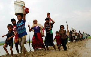 Rohingya case: Balance needs to be struck between national interests and human rights, says SC