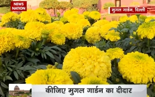 Mughal Garden at Rashtrapati Bhawan opens for public from today