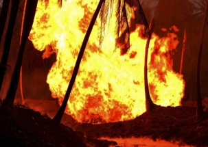 Nation Reporter: Naxals set fire in forest department's wood depot in Maharashtra