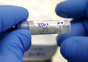 Zika cases rise to 29 in Rajasthan, Centre says no need to panic