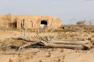 Water crisis deepens in Maharashtra's Budhana, 55 dams run dry