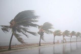 Gaja: Thousands evacuated as cyclone hits Tamil Nadu